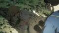 [anime][gif][BTOOOM!gif][BTOOOM!][ヒミコ(BTM)][ヒミコレイプ][下着][おっぱい]