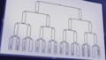 [anime][ガールズ&パンツァー][ガルパン資料][トーナメント][大洗女子学園][聖グロリアーナ女学院][サンダース大付属高校][アンツィオ高校][プラウダ高校][黒森峰女学院]
