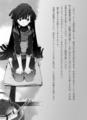 [ライトノベル][ログホラ原作][ログ・ホライズン][アカツキ(LH)][処女][ハラカズヒロ]
