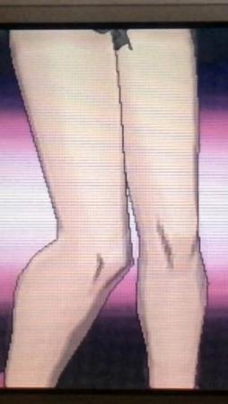 [game][ポケモン(ゲーム)][ポケモンXY][サナ(ポケモン)][あし][ふともも][ひざ]