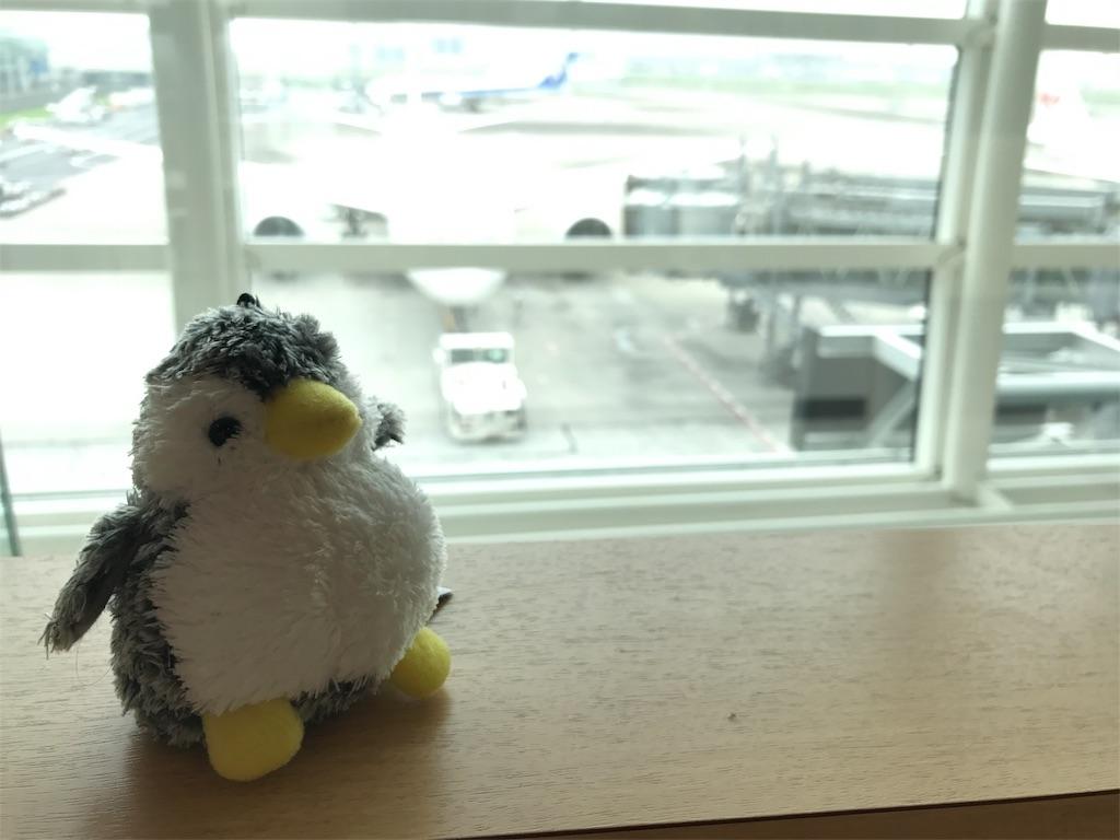 f:id:penguin-kn:20170804101441j:image