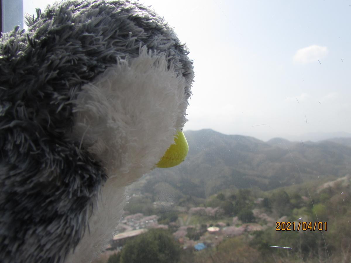 f:id:penguin2020:20210407231547j:plain