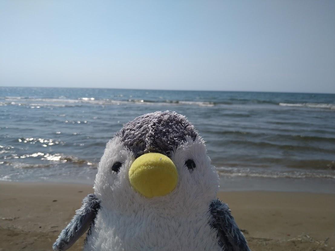 f:id:penguin2020:20210727104816j:plain