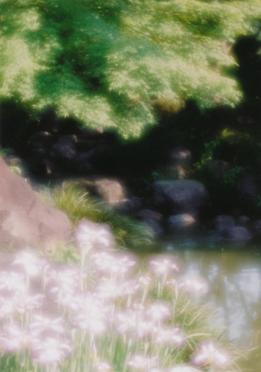 f:id:penpengrass:20180604212411j:image