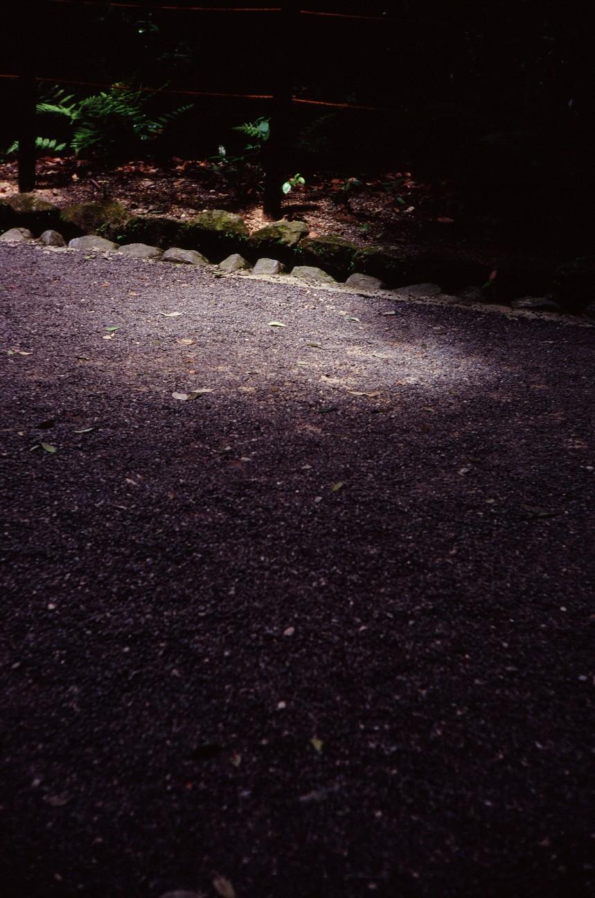 f:id:penpengrass:20180719122231j:image