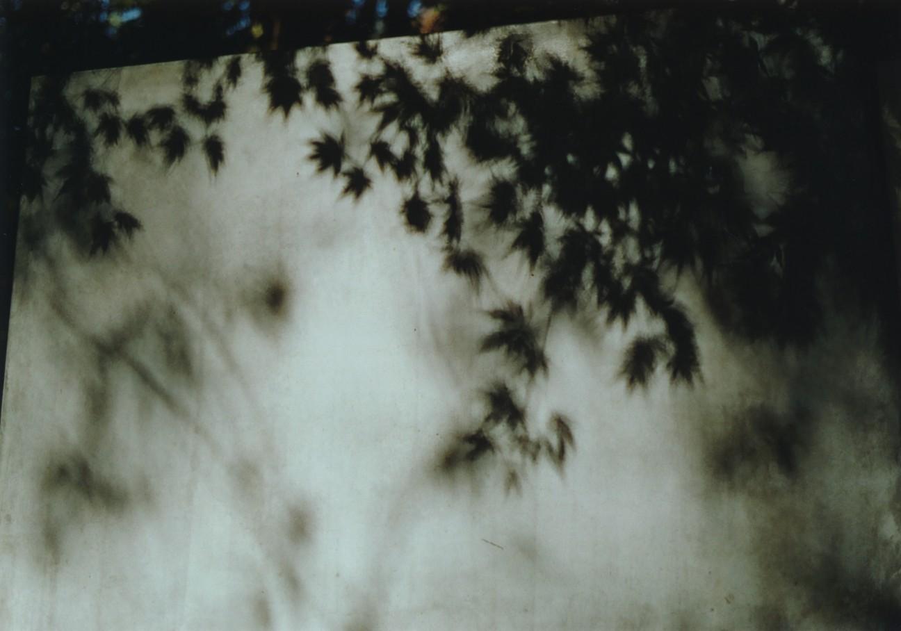 f:id:penpengrass:20181130205814j:image