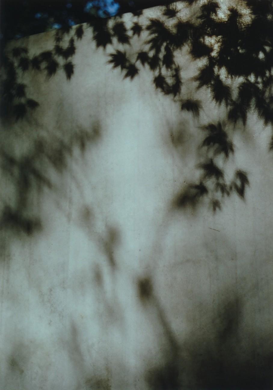 f:id:penpengrass:20181130210006j:image