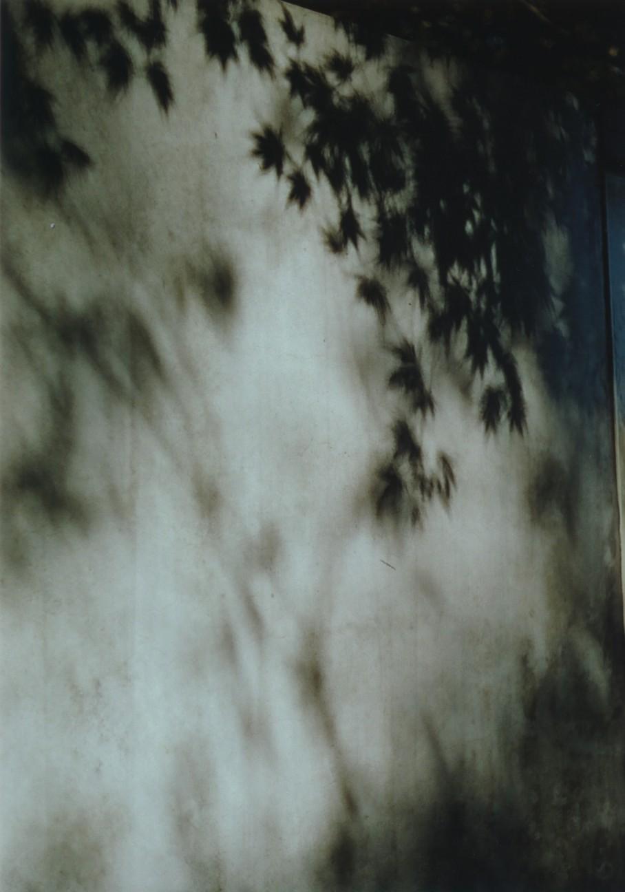 f:id:penpengrass:20181130210102j:image