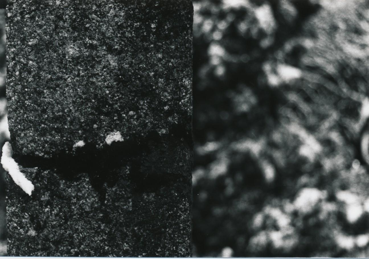 f:id:penpengrass:20190106160840j:image