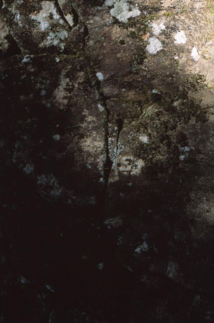 f:id:penpengrass:20191104180210j:image