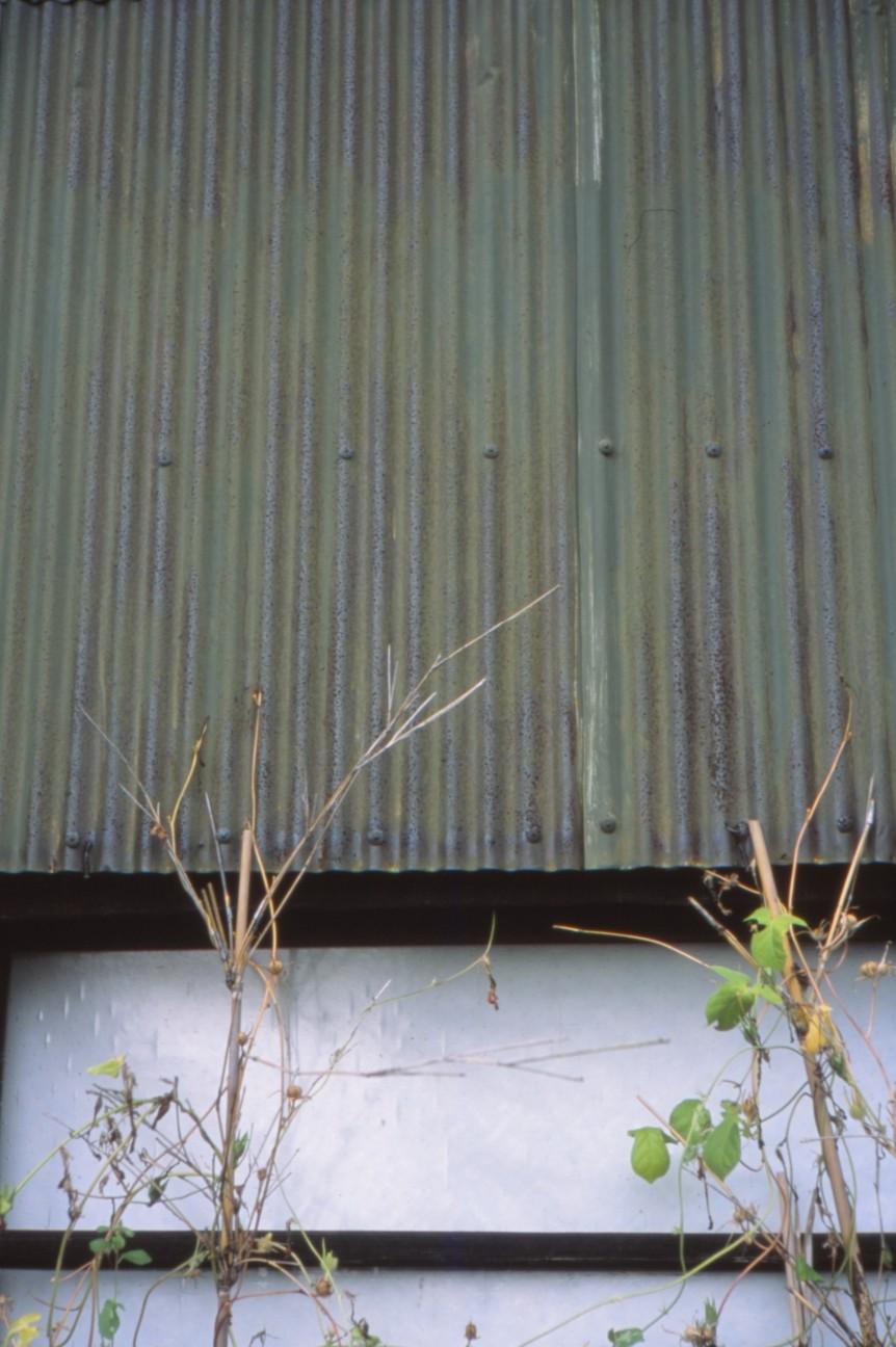 f:id:penpengrass:20191108181930j:image