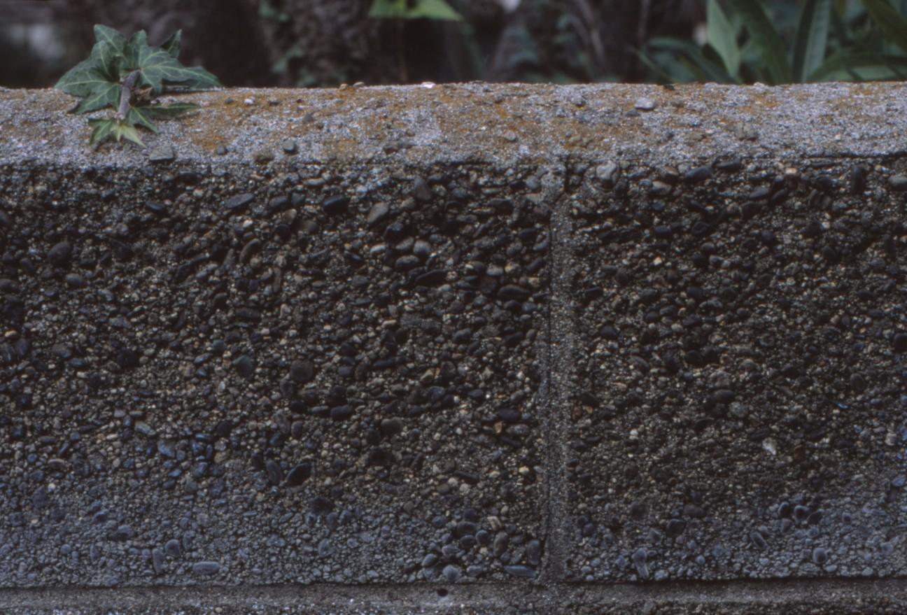 f:id:penpengrass:20200209004526j:image