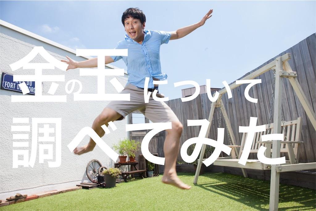 f:id:peronchu-masumi:20160628195002j:plain