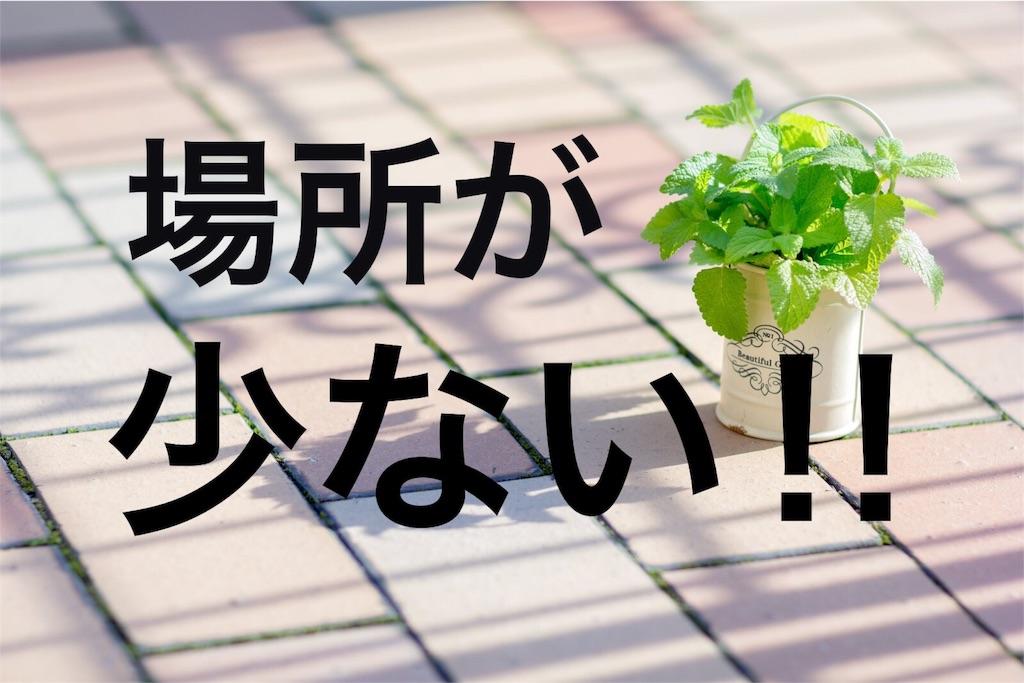 f:id:peronchu-masumi:20160723083705j:plain