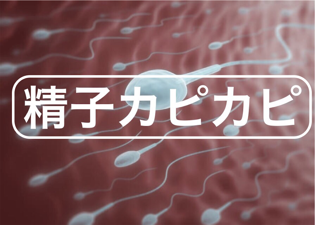 f:id:peronchu-masumi:20161212220506p:plain
