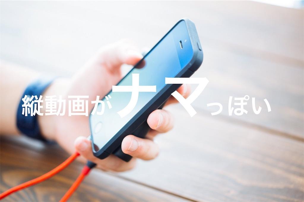 f:id:peronchu-masumi:20170102115506j:plain