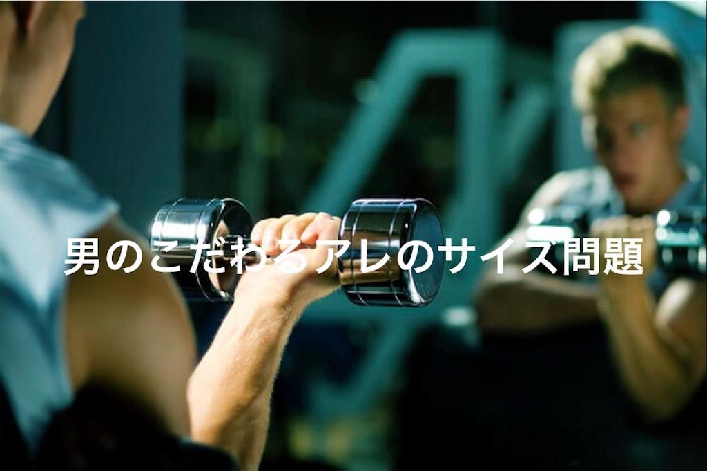 f:id:peronchu-masumi:20170128234055j:plain