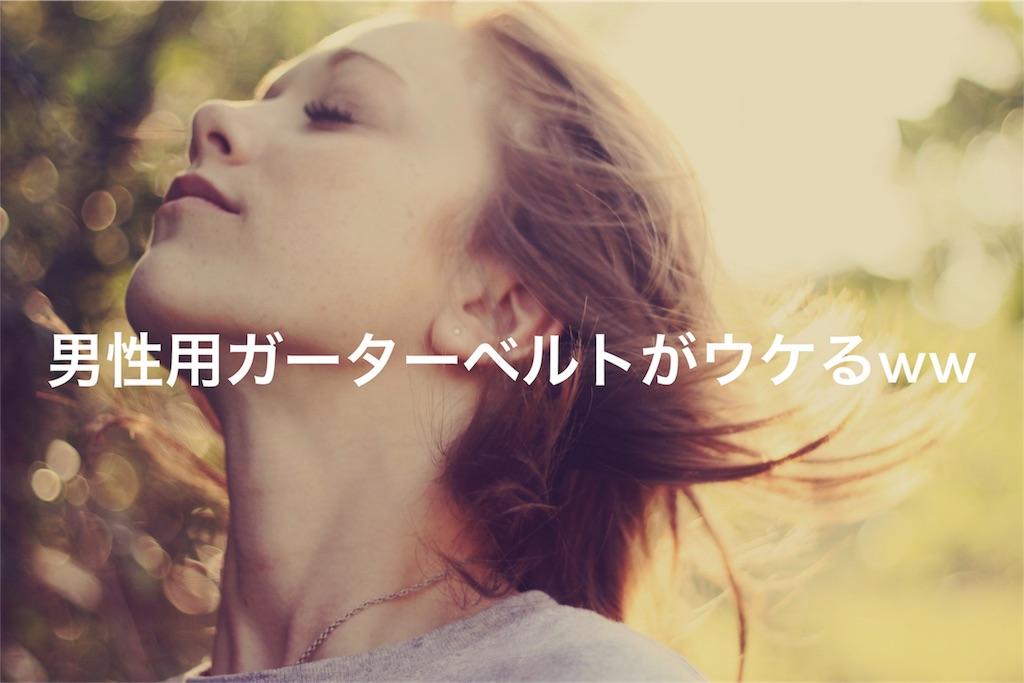 f:id:peronchu-masumi:20170311072913j:image