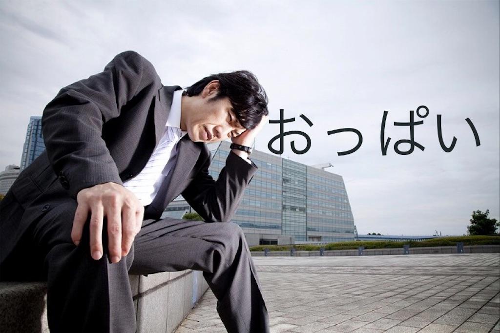 f:id:peronchu-masumi:20170317220843j:image