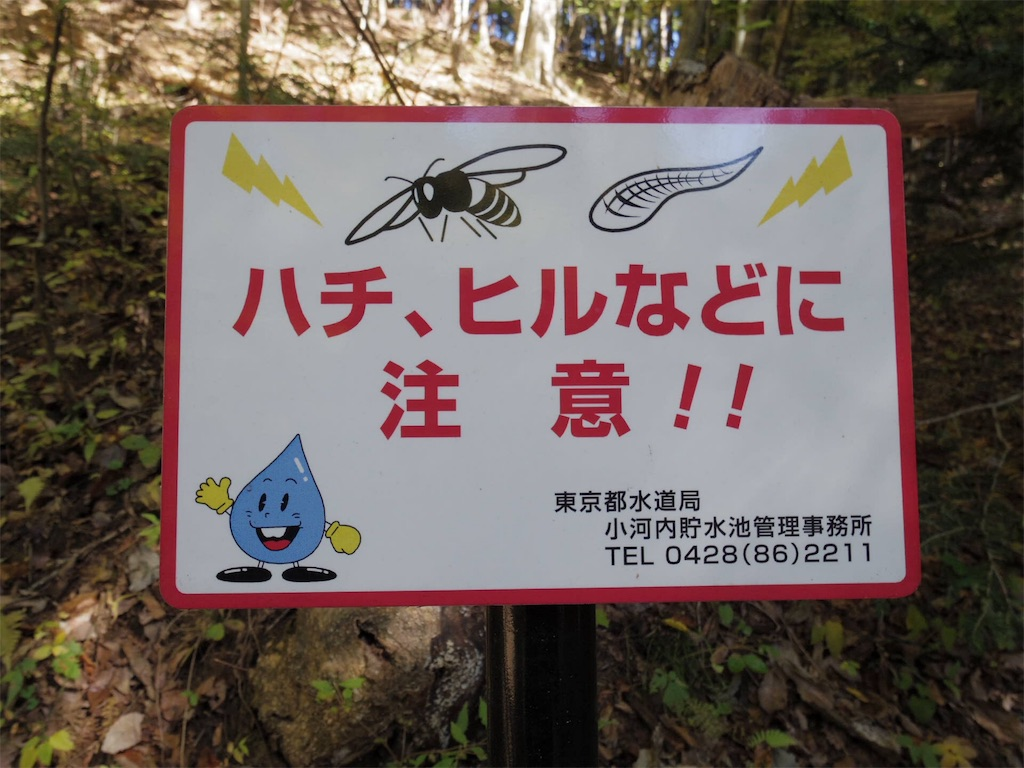 f:id:pescadoraire:20161109220028j:image
