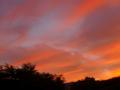 [雲][空][天気][夕焼け]