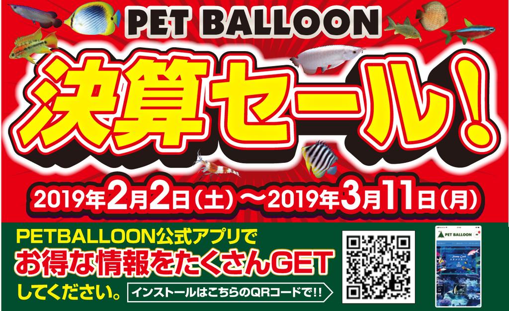 f:id:petballoon:20190201085236j:plain