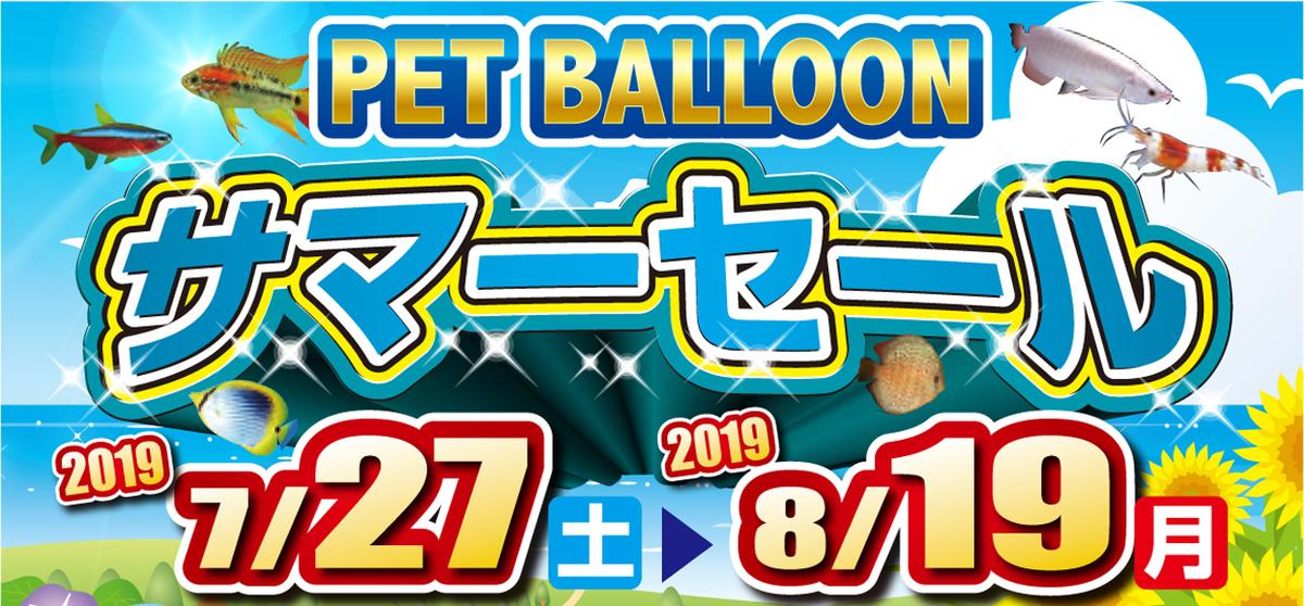 f:id:petballoon:20190726192822j:plain