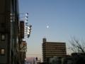 今日は討ち入り、十三夜、ほぼ満月