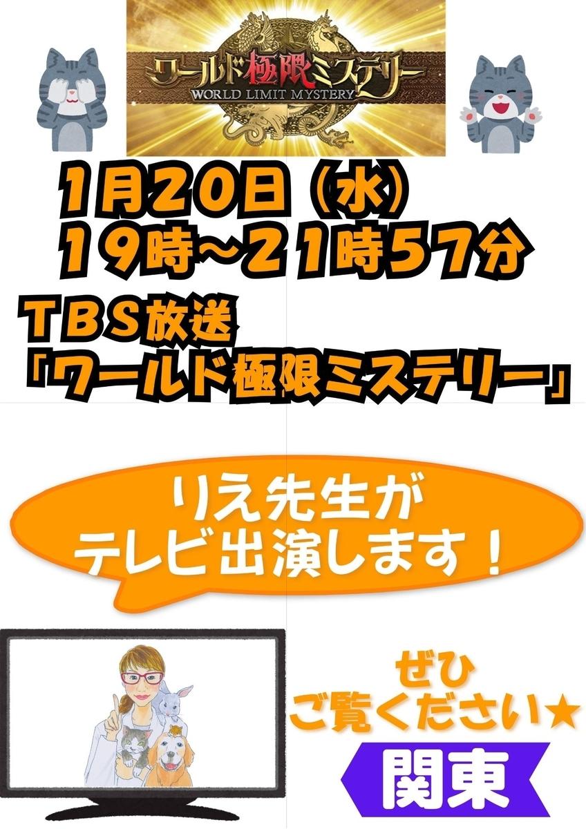 f:id:petnomirai:20210120124052j:plain