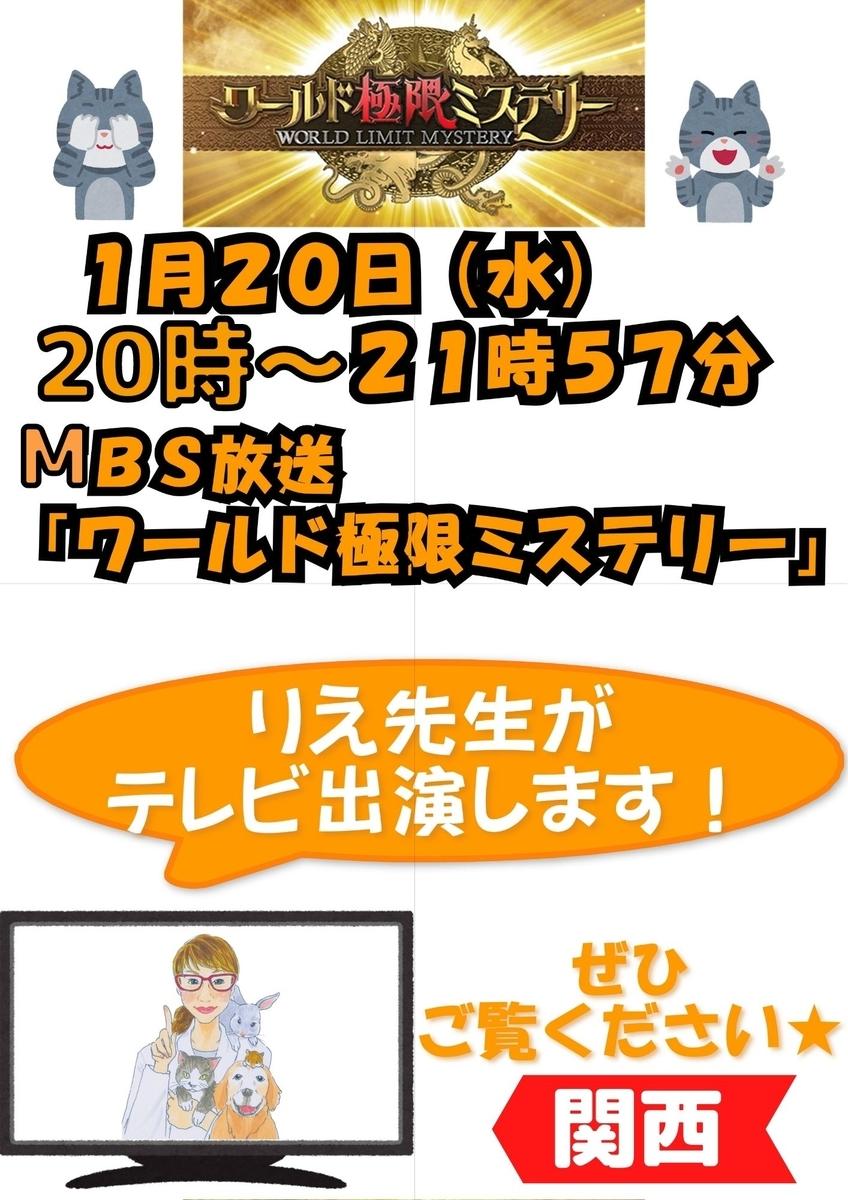 f:id:petnomirai:20210120124056j:plain