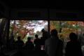 [散策]国分寺 殿ケ谷戸庭園