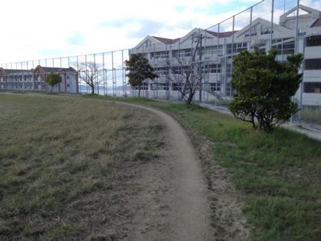 f:id:peugeot106:20111121133508j:image