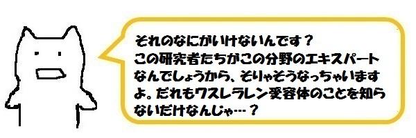 f:id:ph_minimal:20190128114354j:plain
