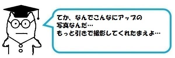 f:id:ph_minimal:20191226145040j:plain