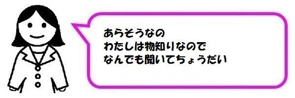 f:id:ph_minimal:20200922222911j:plain