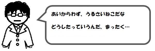 f:id:ph_minimal:20201020211248j:plain