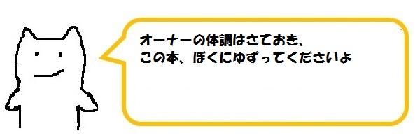 f:id:ph_minimal:20201020211451j:plain