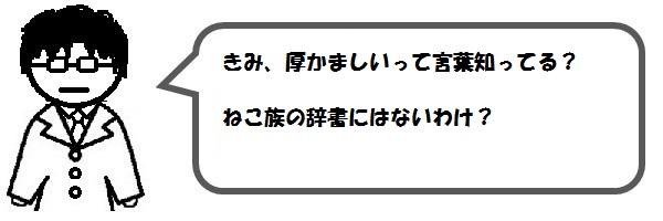 f:id:ph_minimal:20201020211505j:plain