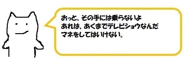 f:id:ph_minimal:20210128204718j:plain