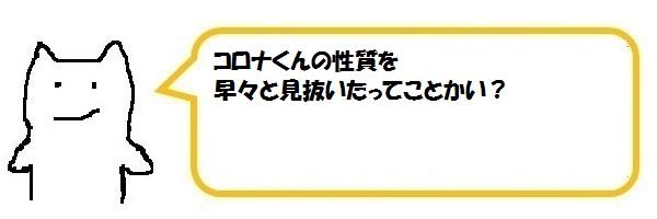 f:id:ph_minimal:20210128205044j:plain