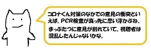 f:id:ph_minimal:20210128205415j:plain