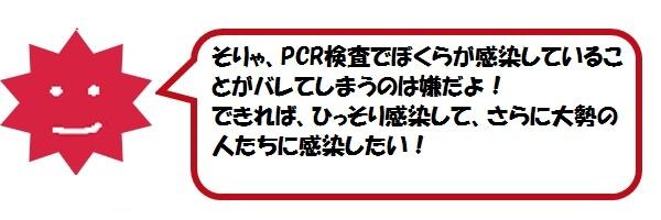 f:id:ph_minimal:20210128205523j:plain