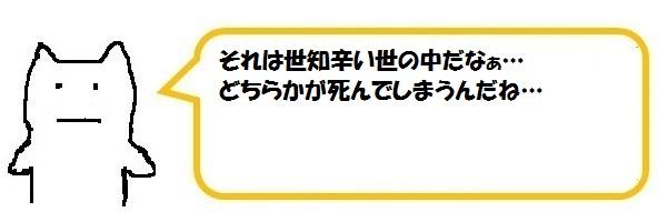 f:id:ph_minimal:20210128205839j:plain