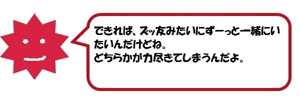 f:id:ph_minimal:20210128205857j:plain