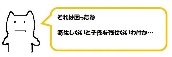 f:id:ph_minimal:20210128210048j:plain