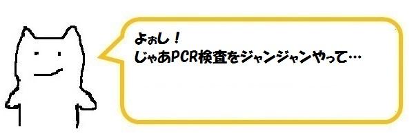 f:id:ph_minimal:20210128210351j:plain