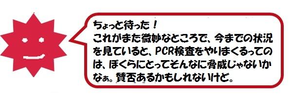 f:id:ph_minimal:20210128210448j:plain