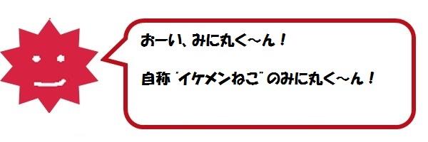 f:id:ph_minimal:20210202223946j:plain