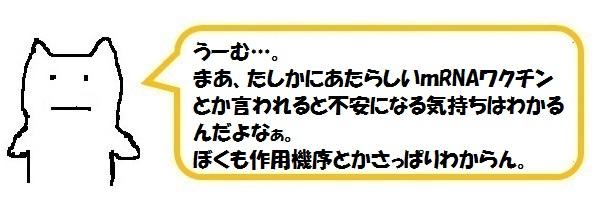f:id:ph_minimal:20210202224747j:plain