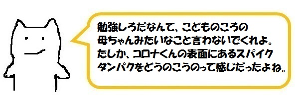 f:id:ph_minimal:20210202224848j:plain